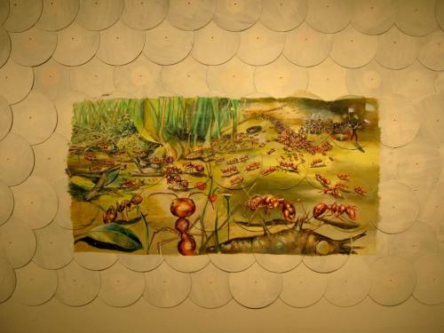 Ants_002