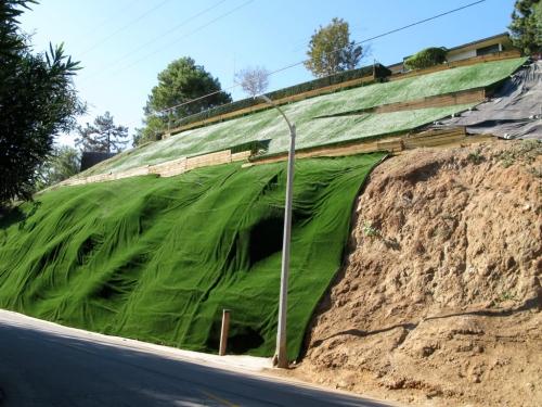 Green_valley