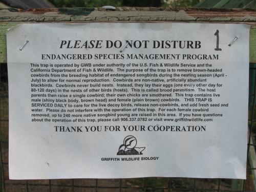 endangered_01